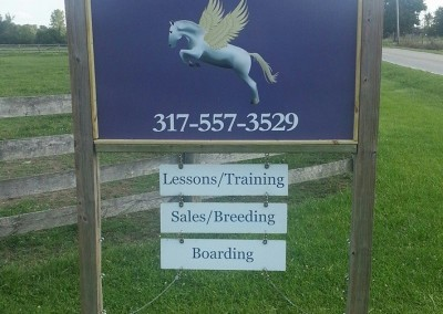Welcome to WOW Equestrian!