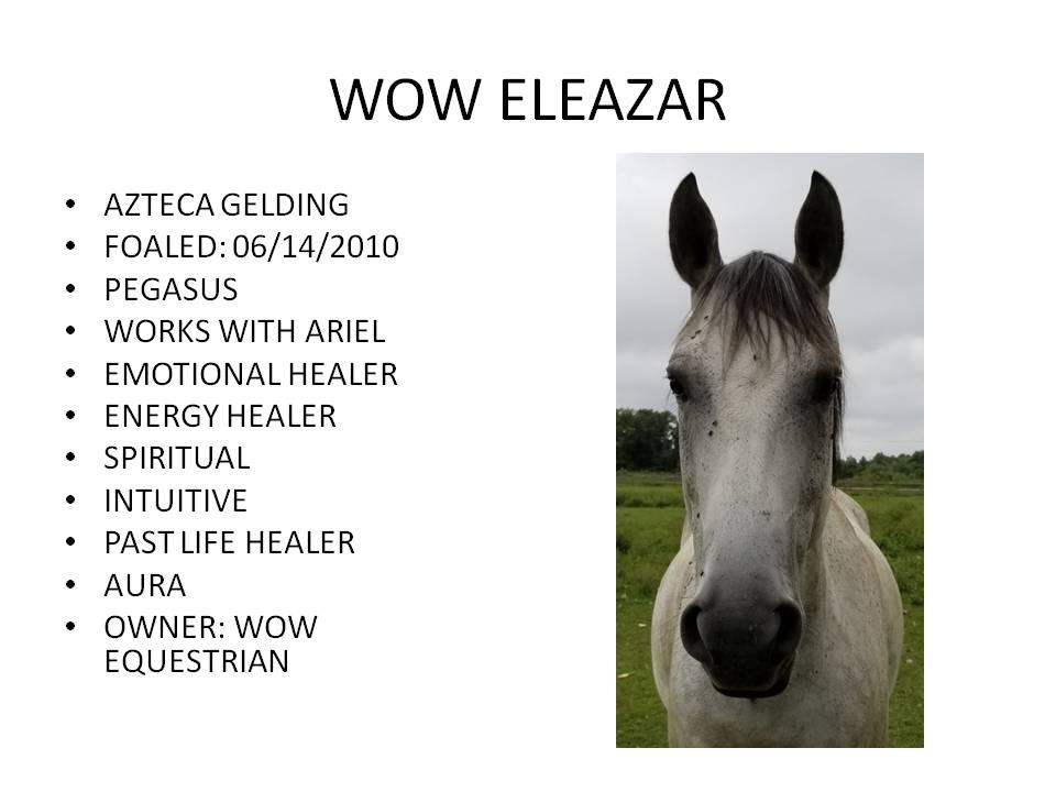 WOWEleazar