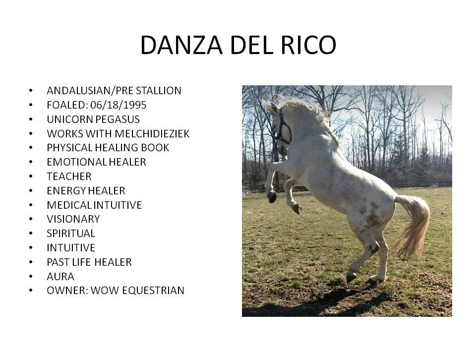 DanzaDelRico95